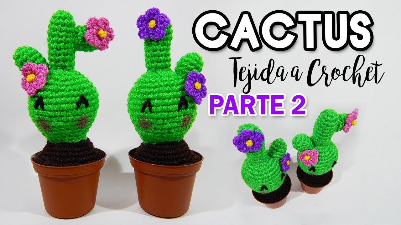 CACTUS a crochet paso a paso - YouTube | 720x1280