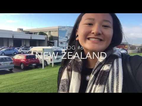 Rugby Game & Maori Culture Experience - NZ #5