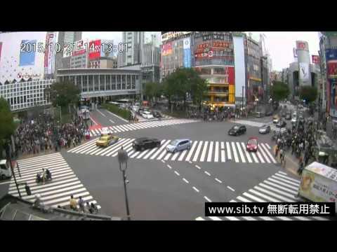 【LIVE CAMERA】渋谷スクランブル交差点 ハロウィン2015 14:00-17:30