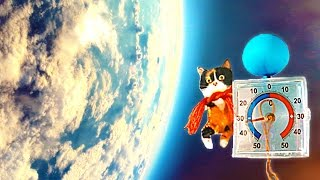 CAT IN SPACE 2 - way to the landing!