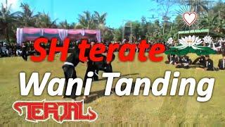Gambar cover Lagu SH Terate wani tanding by : TERJAL