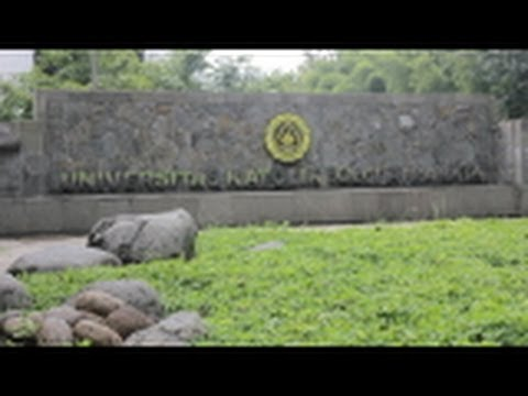 Universitas Katolik (UNIKA) SOEGIJAPRANATA SEMARANG jangan ragu kuliah di sini :)