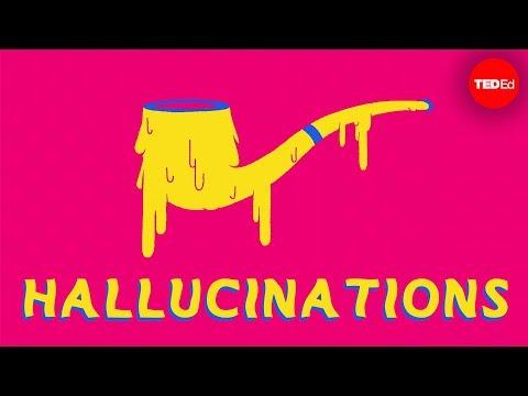 What causes hallucinations?  Elizabeth Cox