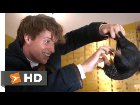 Фантастические твари и где они обитают (2016) - Нюхлер сцена (1/9)   Movieclips