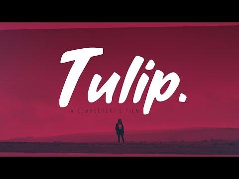 TULIP. / short film by lemasuyuki