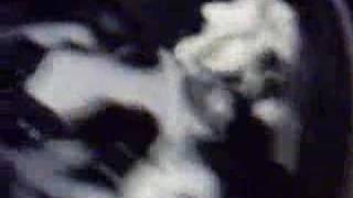 Cymatic Non Newtonian Fluid Experiement thumbnail