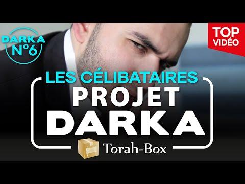 Projet Darka n°6 - Les Célibataires