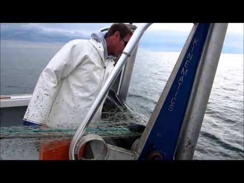 Hardway Commercial Fishing.wmv