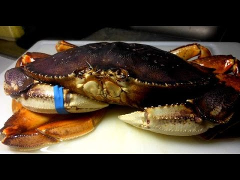 Crab : How to slaughter  and  Cleaning