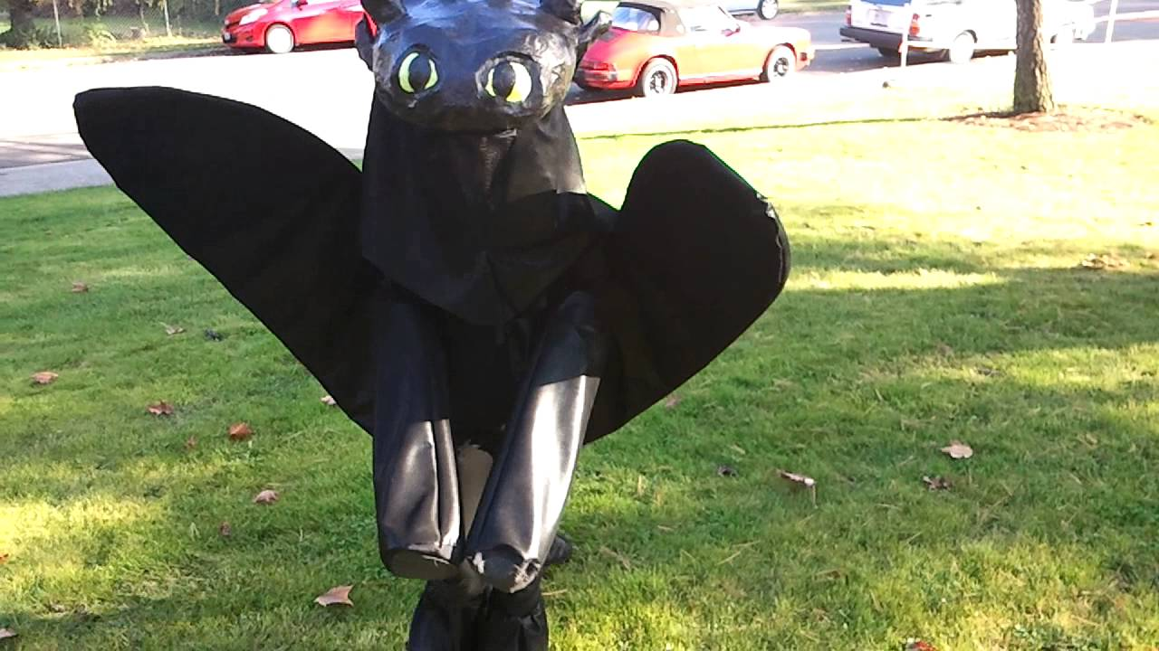 How To Train Your Dragon Toothless Dog Costume