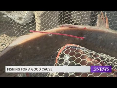 Tagged Redfish Released Along Texas Coast Or Annual CCA Star Tournament