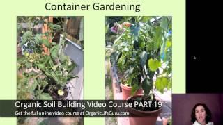 Backyard Organic Container Gardening