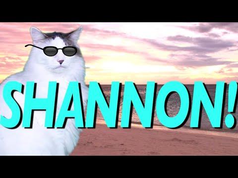 Happy Birthday Shannon Epic Cat Happy Birthday Song