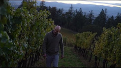 What is the Future of Oregon Wine?