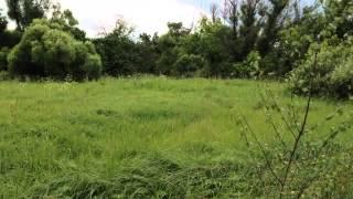 Продам участок Раменский район, с.Никитское, 55 км. от МКАД, участок 19 соток(, 2014-07-05T07:45:50.000Z)