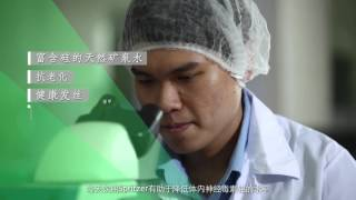 Spritzer Corporate Video (Chinese)