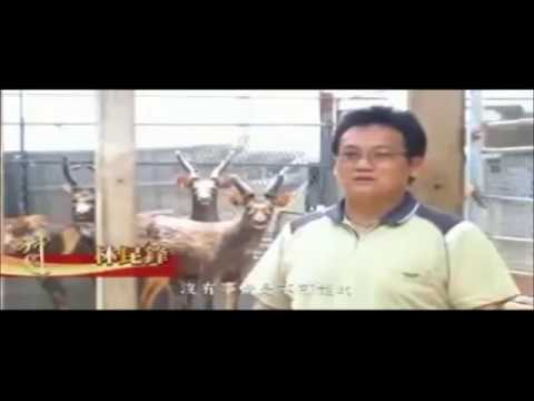 2011 建國百年神農獎林昆鋒