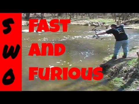 Waukau Bowfishing Action