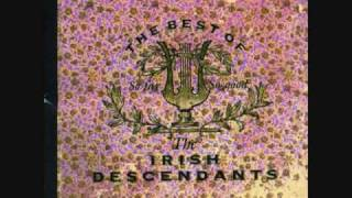 Irish Descendants-Barrett