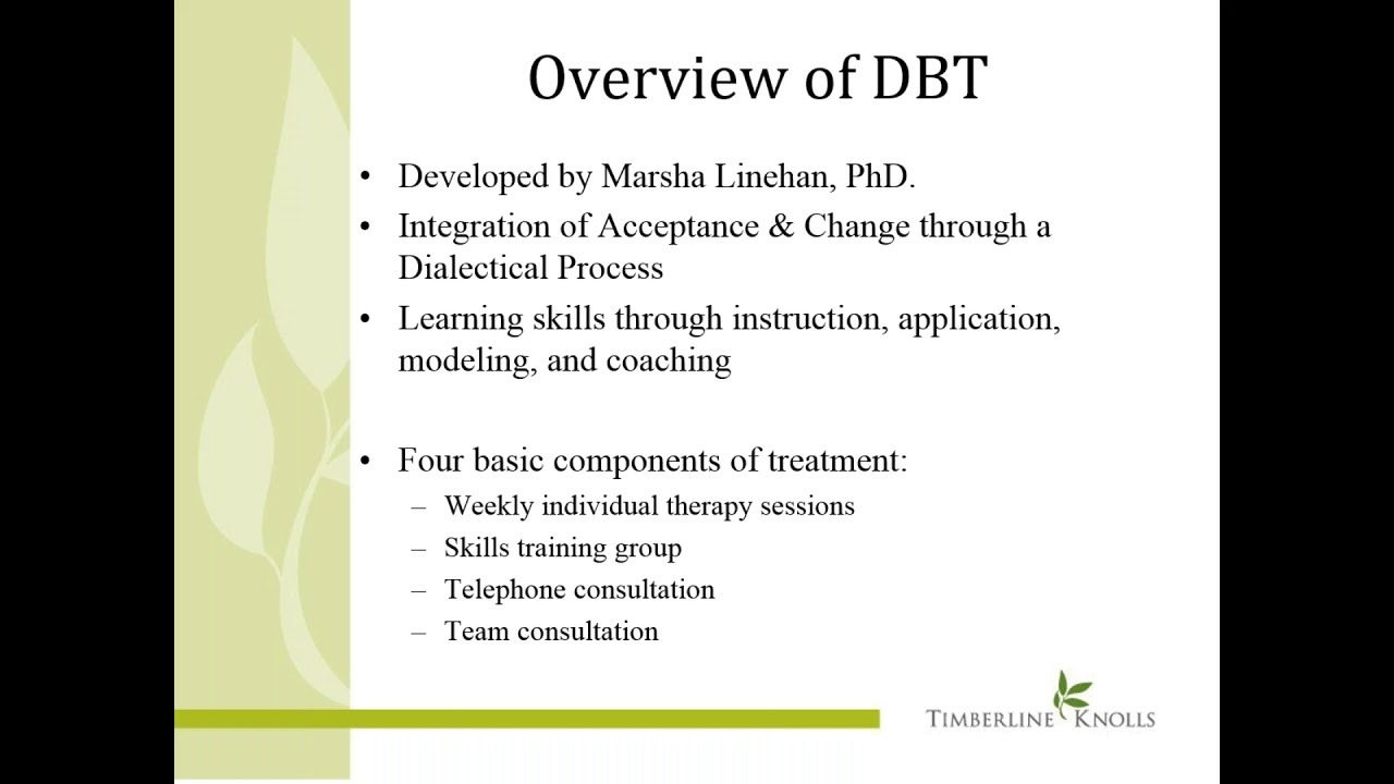 DBT and the 12 Step Model for Addiction Treatment