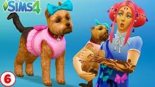 СИМС 4 ЛЮБОВЬ И ИНТРИГИ. Завели собаку Джессику. Создание персонажа в СИМС - Собака с. 6
