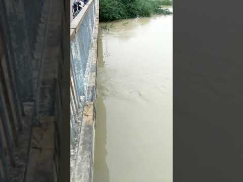 Pandu river flood Bithoor  flood kanpur flood