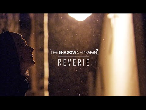 The Shadow Campaign: Reverie