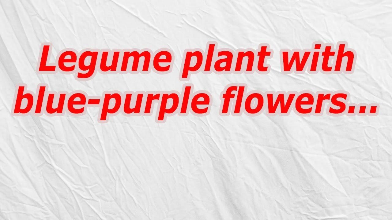 Hawaiian Red Flower Crossword Choice Image - Flower Wallpaper HD
