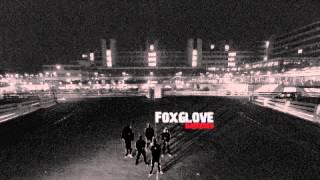 FOXGLOVE HARDCORE - Foxglove Hardcore