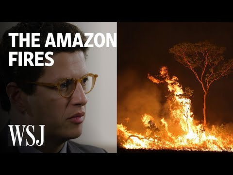 Amazon Rainforest Burns and Brazil's Leaders Are Under Fire
