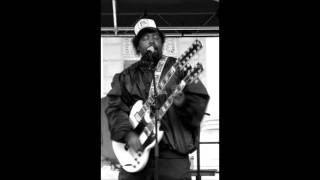 Afroman - Paranoid Extended version (2004)