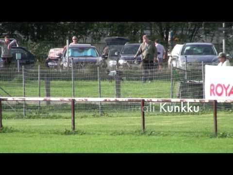 Whippet, Saluki, Basenji and Italian Greyhound racing Kuninkuusjuoksut - Finaalit