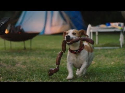2018 Go Outdoors Singing Beagle Advert