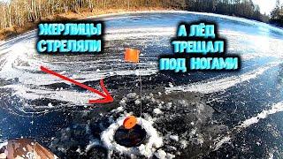 ✔️ Оставил жерлицы на ночь Такого я не ожидал Рыбалка по первому льду Открытие сезона