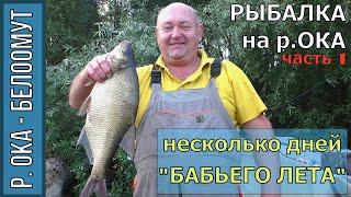 Рыбалка на Оке в Белоомуте, 1 часть, Фидер, Лещ, несколько дней
