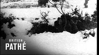 Greek Troops In Snow (1941)