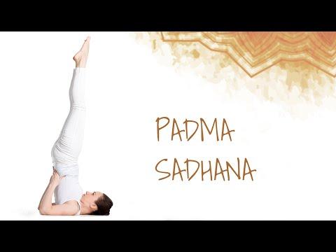 Padma Sadhana