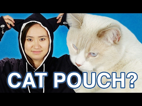 Thumbnail: I Carried My Cat Like A Kangaroo For A Day