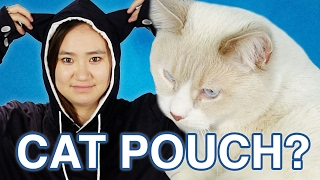 Download I Carried My Cat Like A Kangaroo For A Day Mp3 and Videos