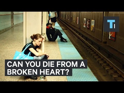 Can you die from a broken heart?