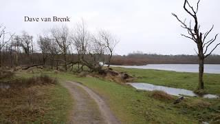 Noordhollands Duinreservaat - Castricum