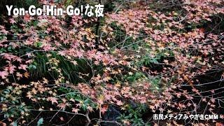 Yon-go Hin-goな夜(第1071回)「訴状閲覧」 thumbnail