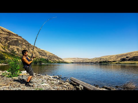 Sturgeon Fishing On The Snake River (One Last Attempt)