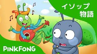 アリとキリギリス | イソップ物語 | ピンクフォン童話