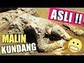 Download Malin Kundang Asli di Pantai Air Manis Padang Sumatera Barat