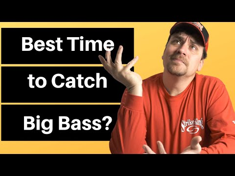 Best Time Of Day To Catch Bass | What Is The Best Time Of Day To Catch Bass | Bass Fishing Tips