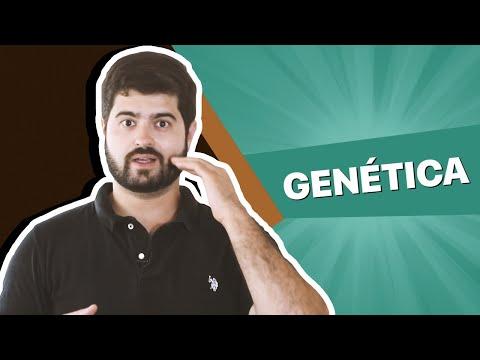 Inteligência é genética (então não adianta se esforçar?)