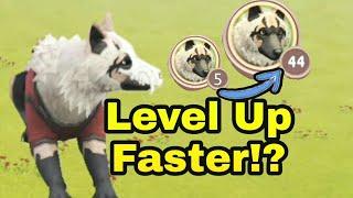 WildCraft Animal Sim 3D Online - Level Up Fast!!