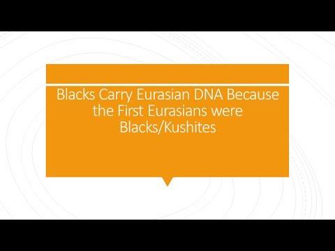 Why Blacks Carry Eurasian DNA