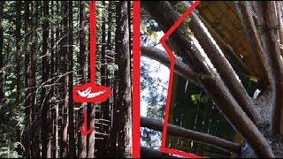 INSANE treehouse and MASSIVE swing in SANTA CRUZ
